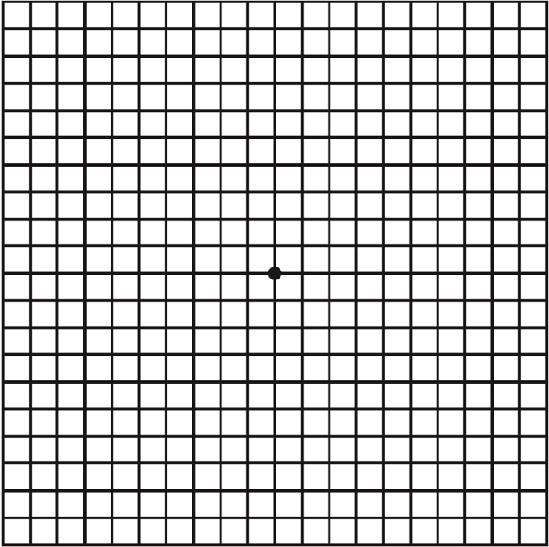 Amsler-Gitter-Test